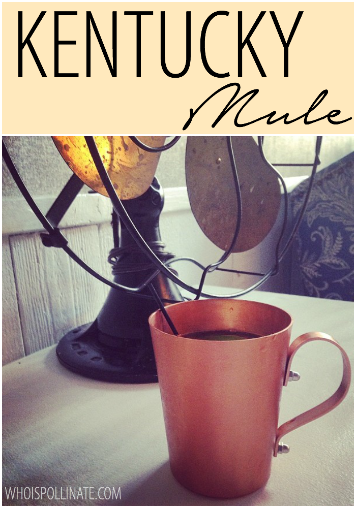 Kentucky Mule Recipe